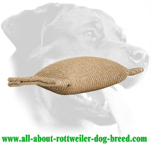 Small Rottweiler Bite Tug Made of Jute