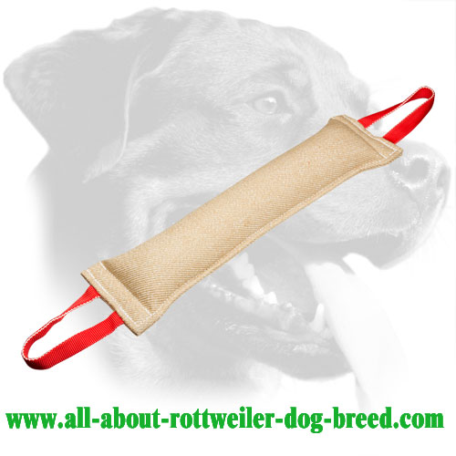 Rottweiler Bite Tug With Comfortable Handles Made of Jute