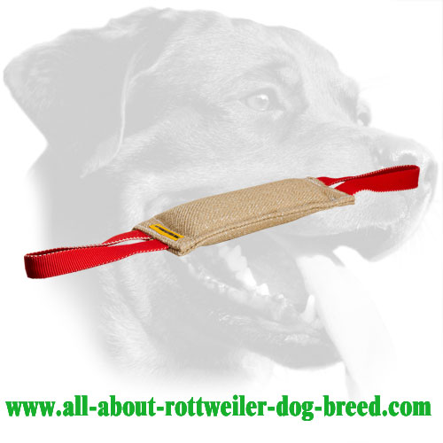 Jute Rottweiler Bite Tug with Two Handles
