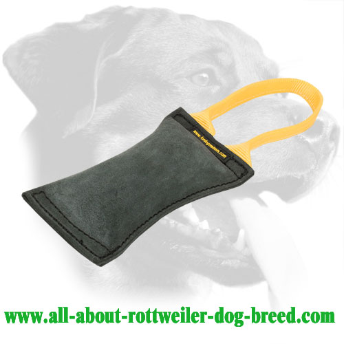 Genuine Double Stitched Leather Rottweiler Bite Tug