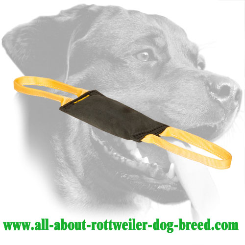 Leather Rottweiler Bite Tug with Double Stitching