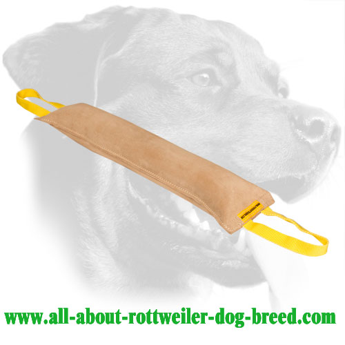 Hypoallergenic Rottweiler Bite Tug Made of Leather