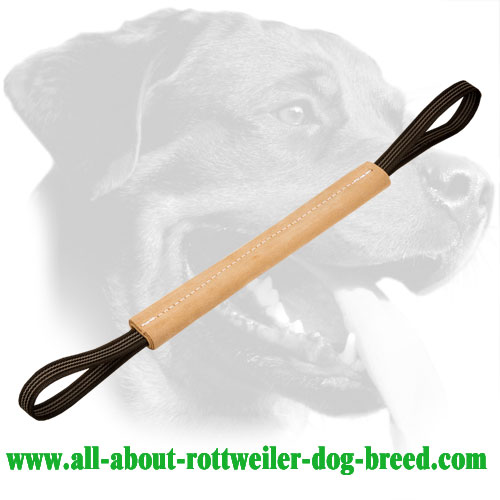Genuine Leather Rottweiler Bite Tug with Stitched Edges