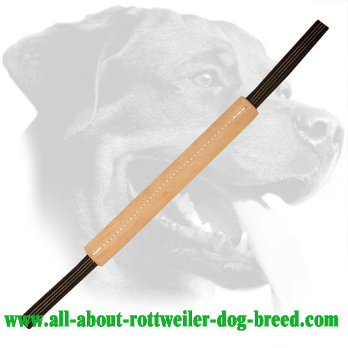 Leather Rottweiler Bite Tug with Improved Durability