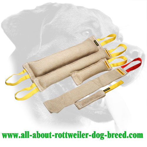 Five Items Jute Rottweiler Dog Bites Set