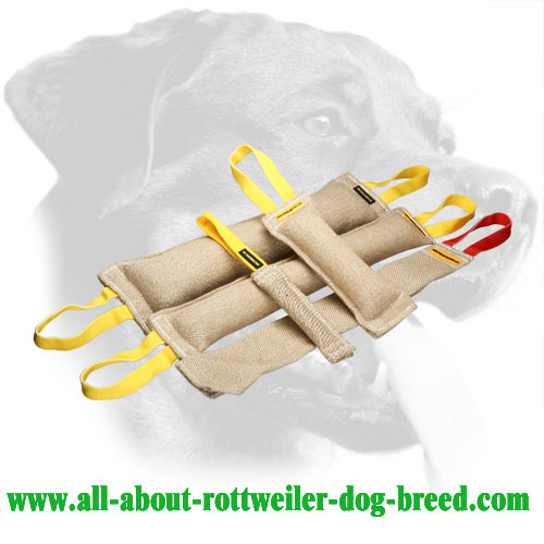 Set of Jute Rottweiler Bite Tugs with Proper Stuffing