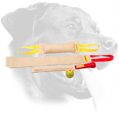 Puppy Training Jute Bite Tugs Set for Rottweiler