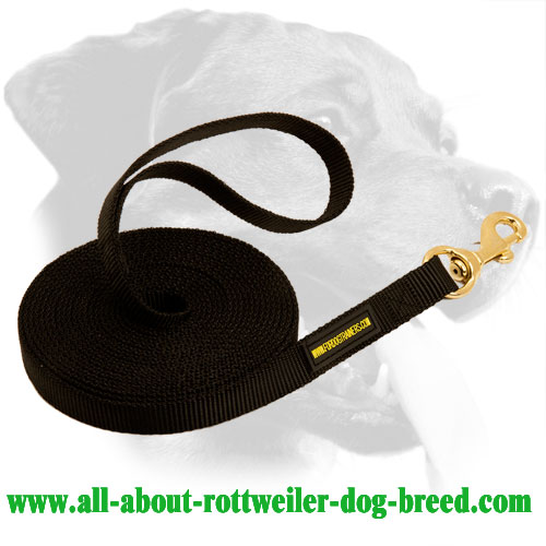 Rottweiler Dog Universal Nylon Leash
