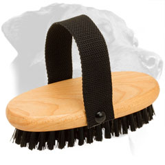 Wooden Rottweiler Brush Equipped with Nylon Handle