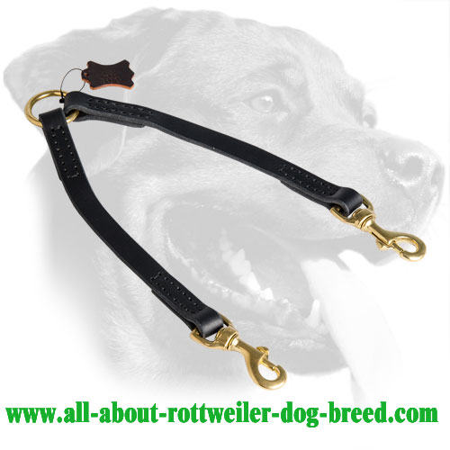 Leather Rottweiler Coupler Equipped with Brass Snap Hooks