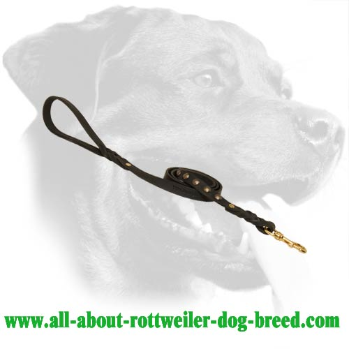 Tearproof Rottweiler Leather Dog Leash