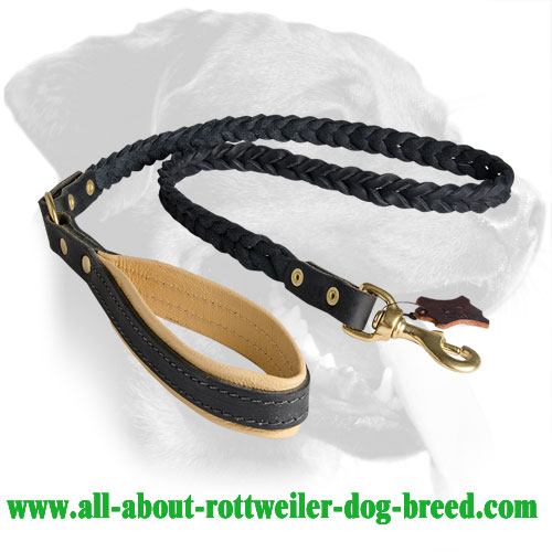 Marvellous Rottweiler Leather Dog Leash
