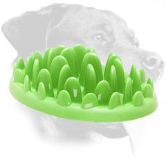 Interactive Green Lawn Plastic Pet Feeder for Rottweiler