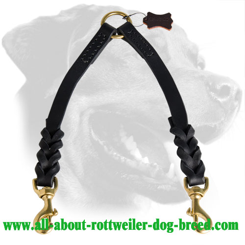 Braided Leather Rottweiler Coupler Leash Fitted with Brass Snap Hooks