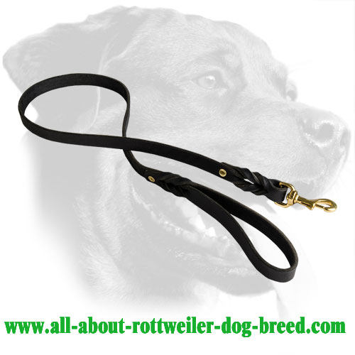 Leather Rottweiler Leash with Braided Decorations