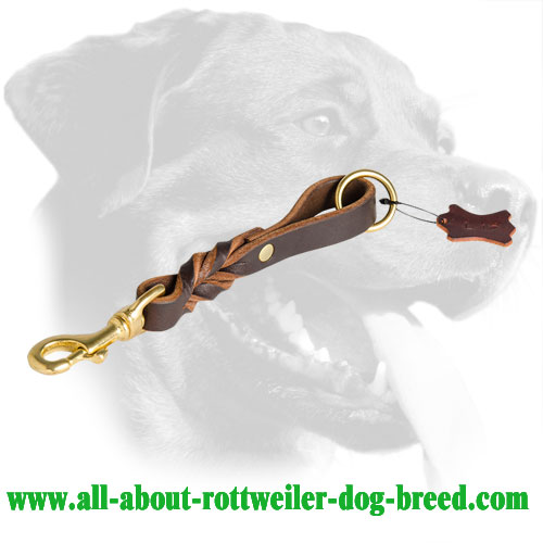 Short Braided Leather Rottweiler Leash with Brass Snap Hook for Easy Attachment