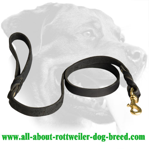 Leather Rottweiler Leash Equipped with Brass Snaphook