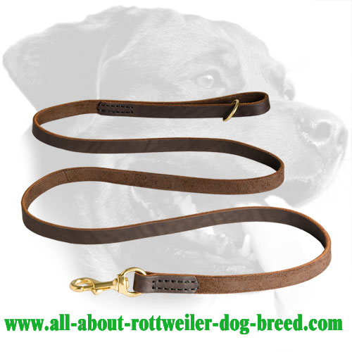 Leather Rottweiler Leash with Stitched Edges