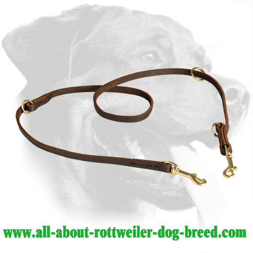 Rottweiler Dog Universal Leather Leash