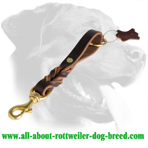 Perfect Short Braided Leather Rottweiler Leash with Brass Floating Ring