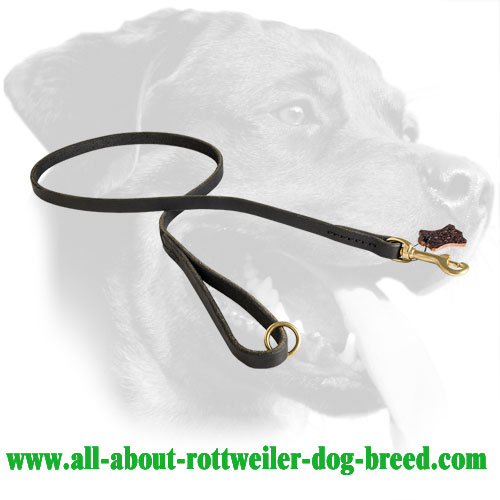 Rottweiler Leash Made of Leather with Smoothed Edges