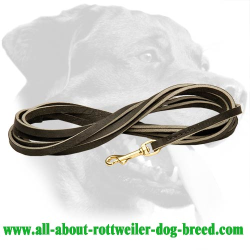 Leather Rottweiler Leash Stitched on Edges