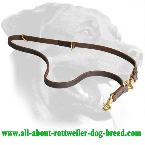 Leather Rottweiler Leash Equipped with Two Snap Hooks