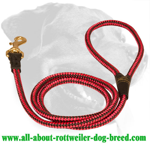 Chess Ornament Decorated Nylon Rottweiler Leash