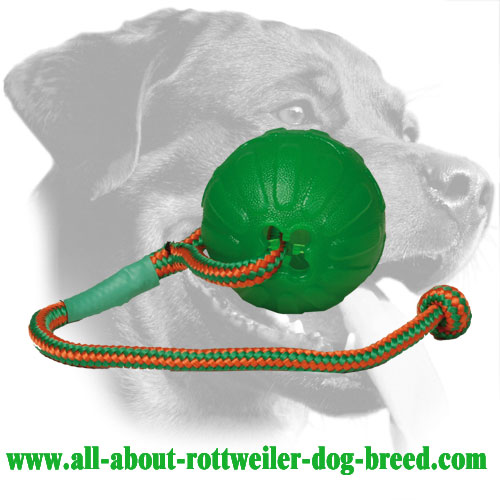 Foam Rottweiler Retrieve Ball with Dotted Surface
