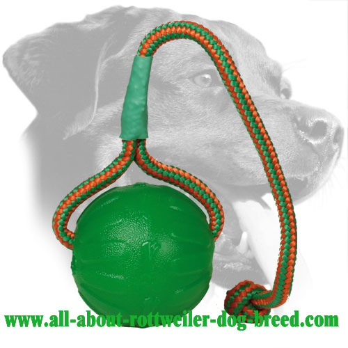 Foam Rottweiler Retrieve Ball with Rope Handle