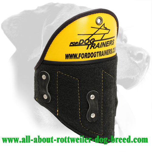 Removable Rottweiler Shoulder Protector Made of Plastic