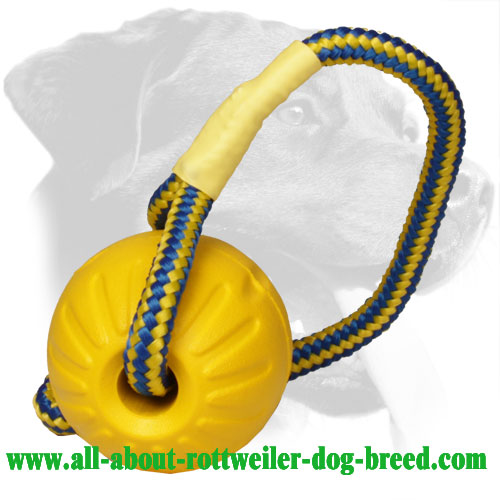 Foam Rottweiler Training Ball Equipped with Long Handle