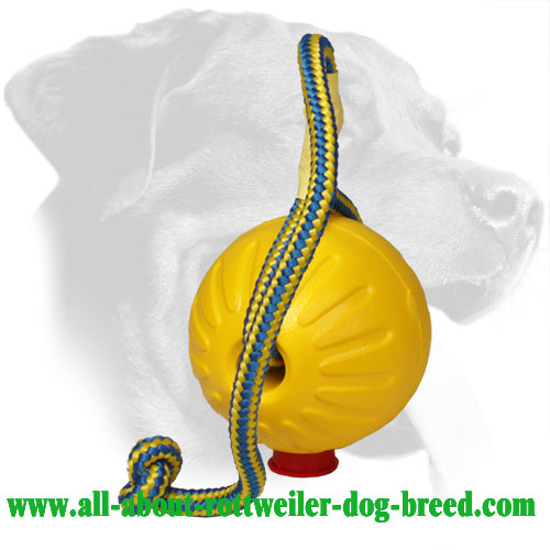 Rottweiler Foam Training Ball Equipped with Nylon Handle