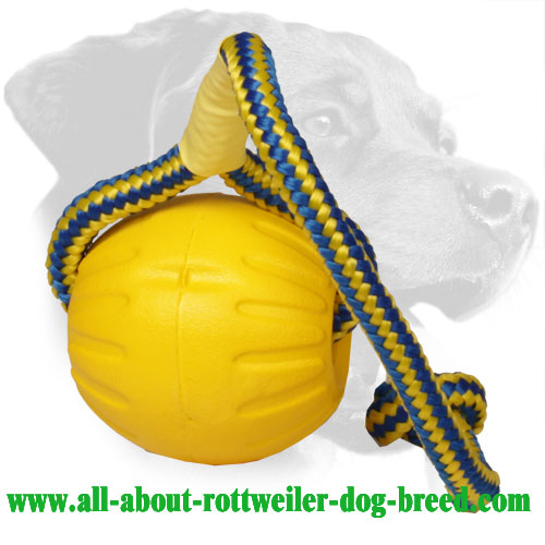 Water Floating Rottweiler Training Ball Made of Foam