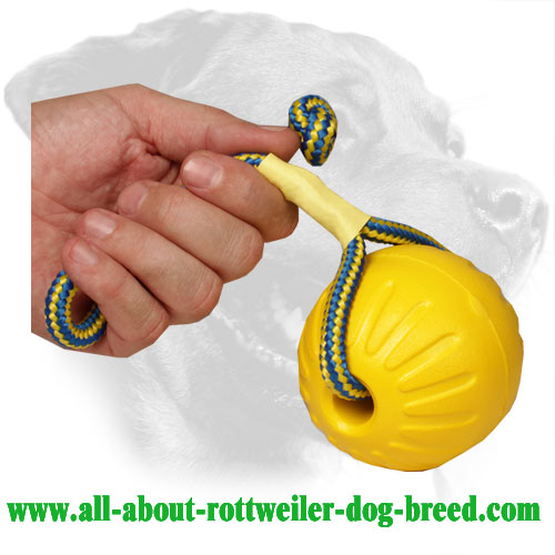 Rottweiler Water Floating Training Ball Made of Foam