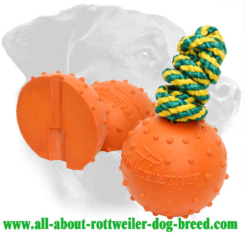 Rottweiler Training Ball Made of Rubber with Dotted Surface