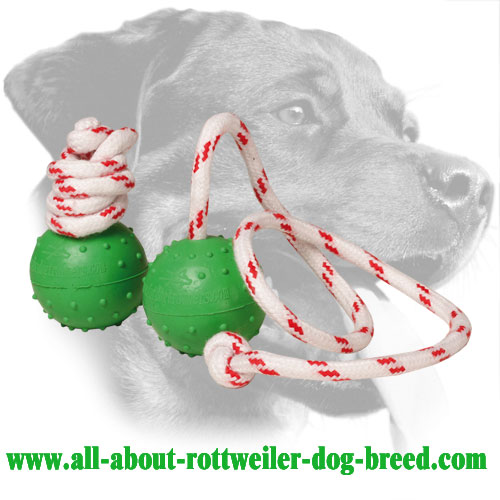 Rubber Rottweiler Training Ball Equipped with Nylon Handle