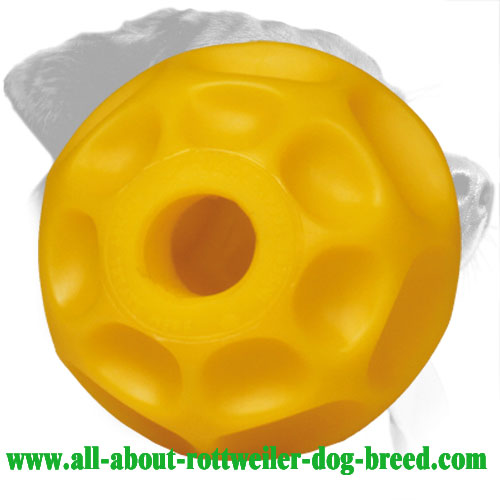 Tetraflex Rottweiler Treat Dispensing Chewing Toy