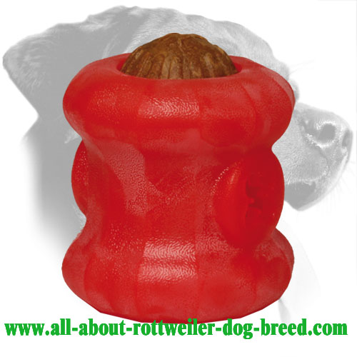 Dental Hygiene Rottweiler Treat Holder Made of Durafoam