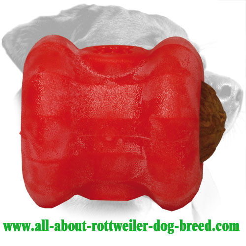 Rottweiler Treat Holder Made of Dishwashable Durafoam