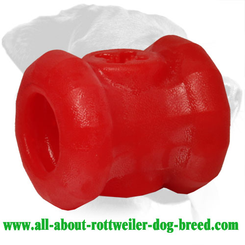 Rottweiler Treat Holder Made of Indestructible Durafoam