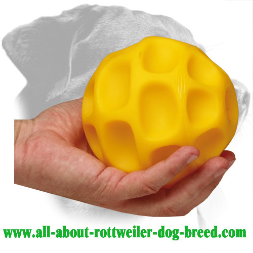 Tetraflex Rottweiler Treat Holder for Retrieve Training