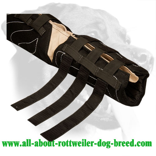Hidden Bite Sleeve for Rottweiler protection training