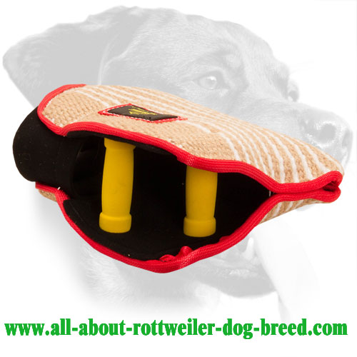 Jute Rottweiler Bite Developer Equipped with Two Handles
