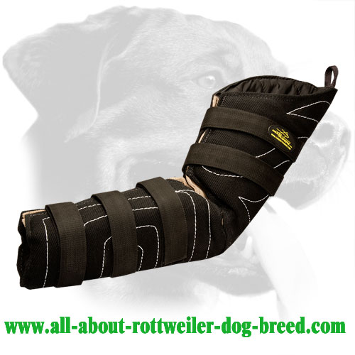 Bite Hidden sleeve for K9 training Rottweiler