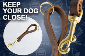 Rottweiler Leather Leash