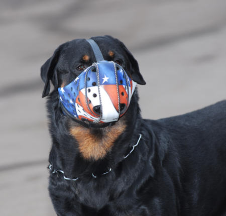 State-of-Art American Flag Painted Leather Dog Muzzle for Rottweiler