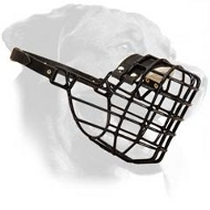 Wire Basket Rottweiler Muzzle for Winter Walking and Training