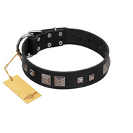 """Foregone Riches"" FDT Artisan Black Leather Rottweiler Collar with Old Silver-like Square Studs and Pyramids"
