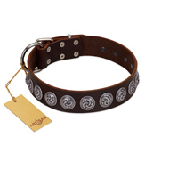 """Charming Circles"" FDT Artisan Brown Leather Rottweiler Collar with Silver-like Studs"